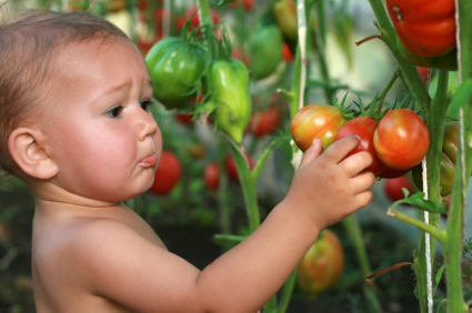 Pesticides linked to ADHD