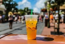 Valencia Orange Refresher