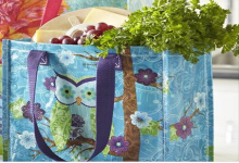 Pier One Imports Free Tote