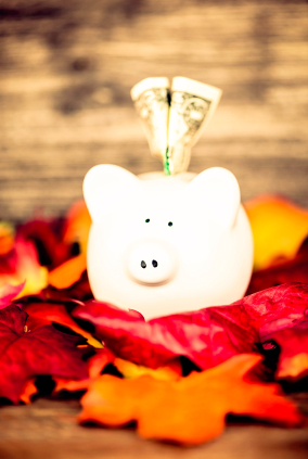 Travel can be very expensive. Here are some tips that might make it possible for you to see your family on Thanksgiving.