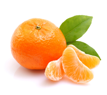 how to grow seedless clementines