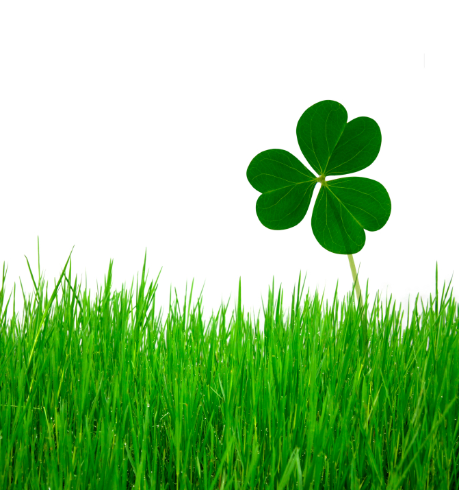 We are all careful of what we feed our bodies and a holiday shouldn't change that. Be kind to your health this year with these natural ideas for St Patrick's Day.We are all careful of what we feed our bodies and a holiday shouldn't change that. Be kind to your health this year with these natural ideas for St Patrick's Day.