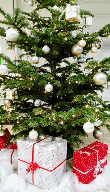 Real Christmas trees require a certain amount of maintenance and care in order to keep them moist.  Here are some tips to help you care for your tree.