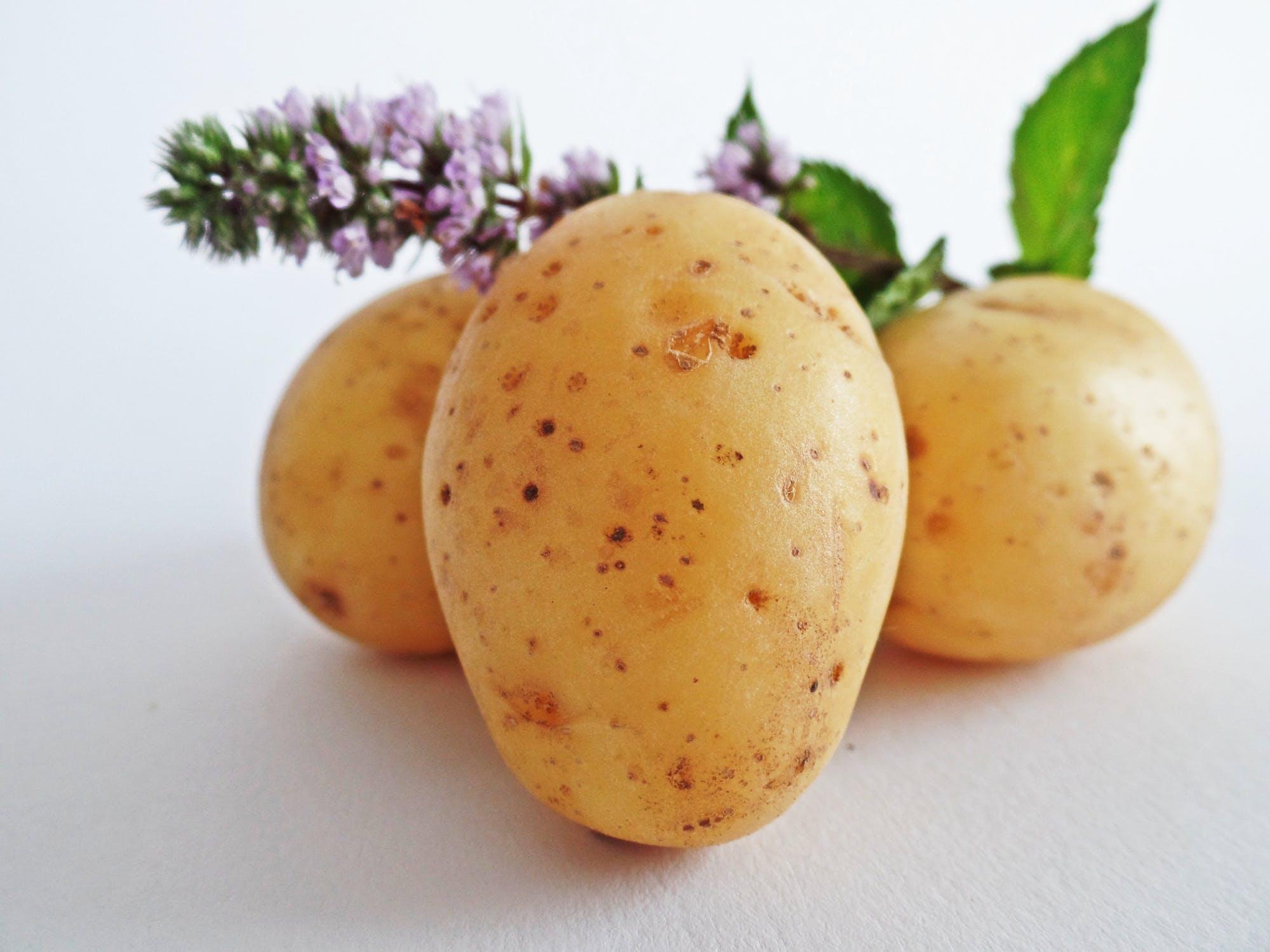 Save on Seasonal Produce in December