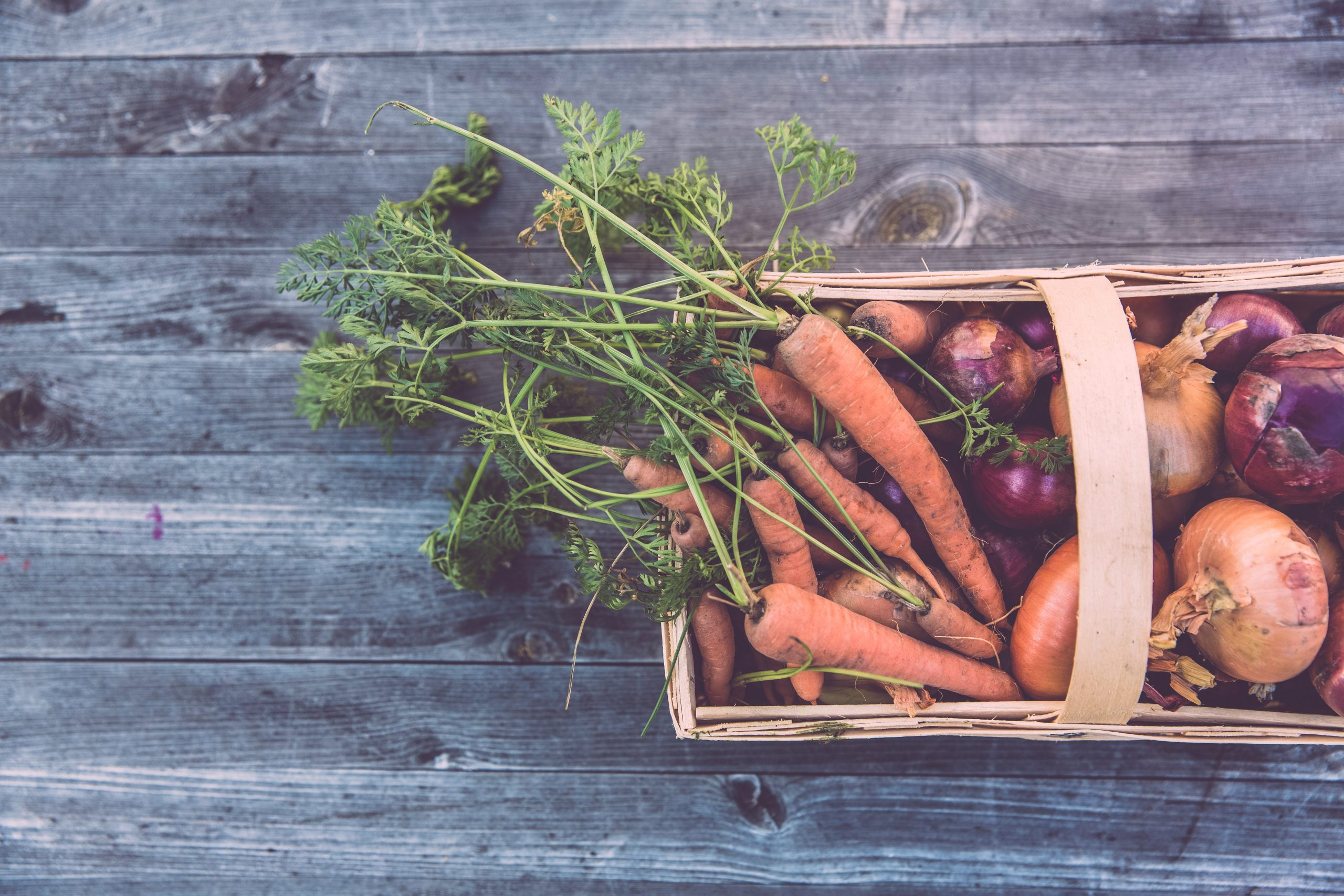 How to Prevent Food Waste and Save on Groceries